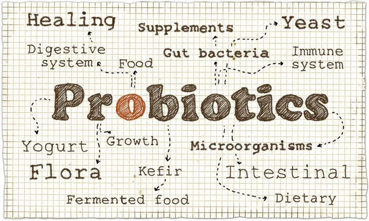 Probiotic Treatment of Irritable Bowel Syndrome